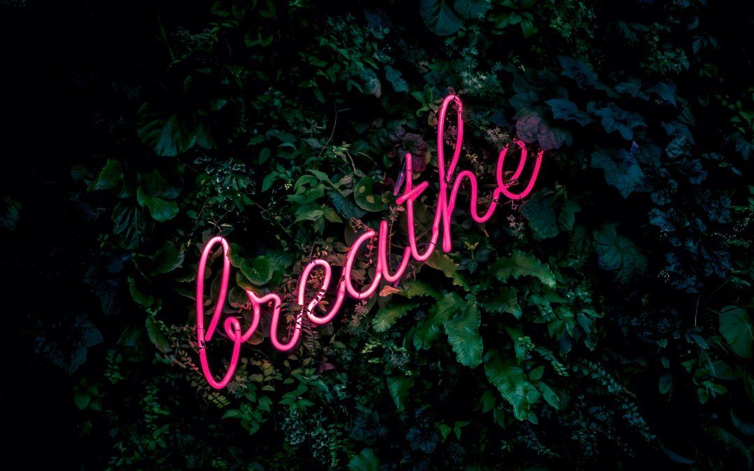 Breathe Clean Air in a Healthy Home